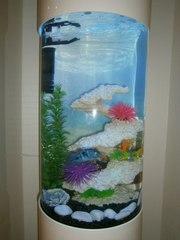Красивый комплексный аквариум 130л Marvelous
